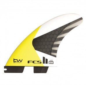 Finy FCS II BW PC Carbon